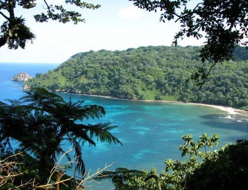 В Коста-Рике без виз россияне смогут отдыхать до 3 месяцев.