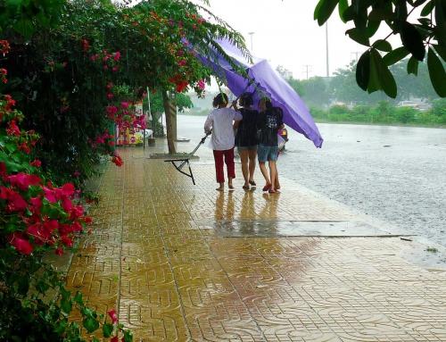 Каким будет лето в Таиланде: прогноз⛅