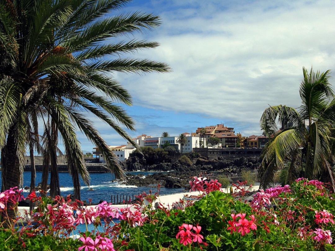 5 причин для поездки на Тенерифе в декабре