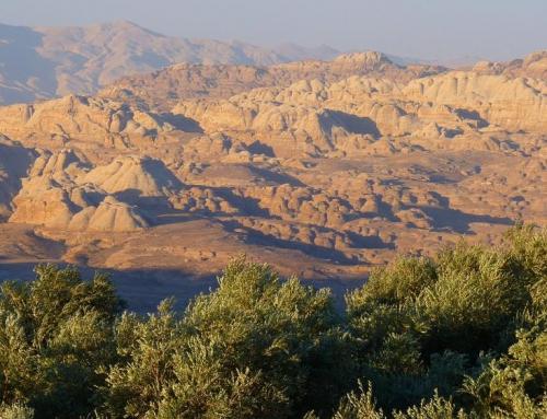 Почему этой зимой вместо Израиля стоит поехать в Иорданию